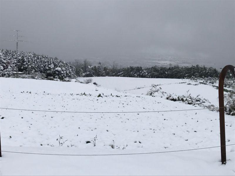 初雪です!!